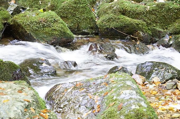 岡山県にある山乗渓谷不動滝にいってきた!口コミ体験談